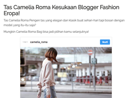 fashion article